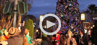 DCA Tree Lighting Ceremony