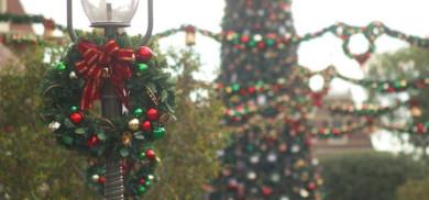 Disneyland Christmas 2013