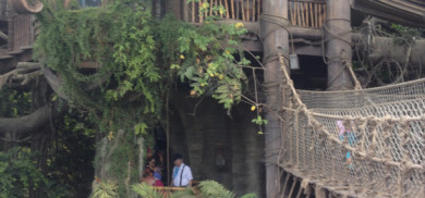 Tarzans Treehouse
