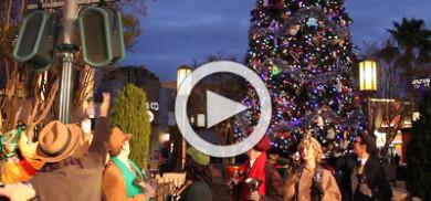 DCA Tree Lighting Ceremony